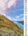 paraplane in alaska landscape 31694298