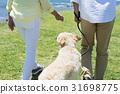 시니어 부부와 강아지 초원과 푸른 하늘 31698775