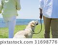 시니어 부부와 강아지 초원과 푸른 하늘 31698776