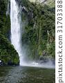 밀포드사운드,남섬,뉴질랜드 31703388