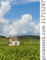 Vineyard in Beaune 31715287
