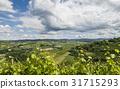 Vineyards of Castiglione Falletto, Piedmont 31715293