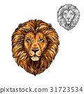 lion,sketch,muzzle 31723534