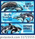 Big giant animals of deep ocaen vector banners set 31723555