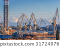 Industrial cargo cranes in the dock 31724076