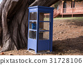 Blue phone box with old tree in Tasmania 31728106