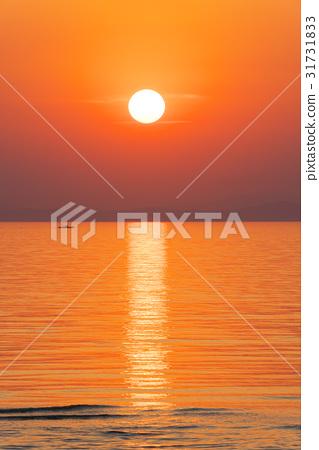 Setting sun 31731833