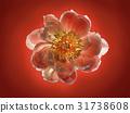 Full Bloom 31738608