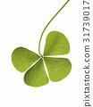 Leaf 31739017