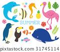 動物 熱帶 圖像 31745114