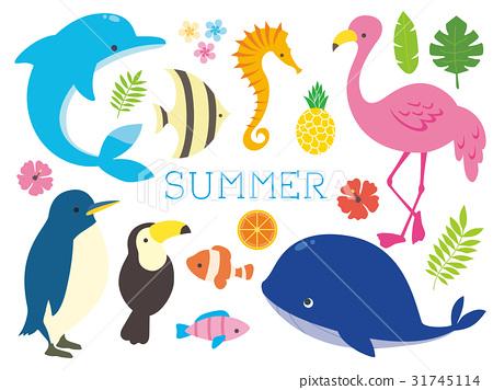 动物 热带 图像 31745114