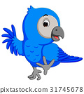 Macaw bird cartoon 31745678