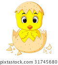 little cartoon chick hatched from an egg 31745680