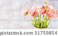 Beautiful pink ranunculus bouquet 31750854
