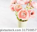 Beautiful pink ranunculus bouquet 31750857