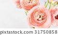 Beautiful pink ranunculus bouquet 31750858