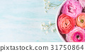 Beautiful pink ranunculus in bowl with water 31750864