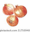 onion, onions, vegetables 31750948