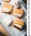 Home made smore marshmallow treat for kids 31750966