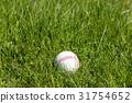 Baseball in green grass 31754652