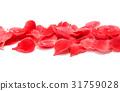Petals of chaenomeles 31759028