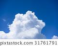 Thunderhead, blue sky, sky 31761791