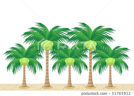 coconut 31765912