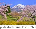 mountain, fuji, mt 31766763