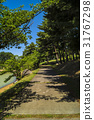 戶外 風景 自然 31767298