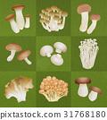 mushroom, mushrooms, king trumpet mushroom 31768180