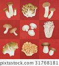 mushroom, mushrooms, king trumpet mushroom 31768181