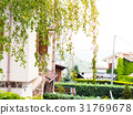 Italian mountain houses and green branches 31769678