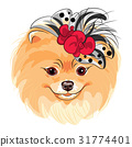 vector fashion dog Pomeranian breed smiling 31774401