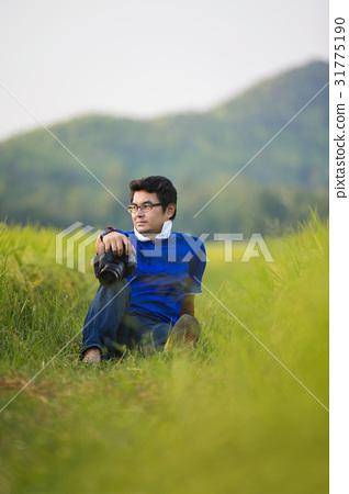 rice field 31775190