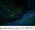 firefly, lightning, bug 31782053