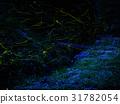 firefly, lightning, bug 31782054