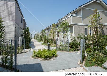 房屋和房屋的街道 31788278