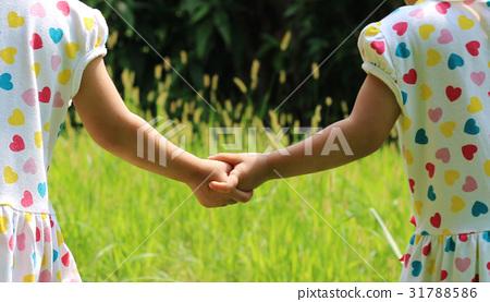 雙胞胎姊妹手牽手散步的背影 31788586