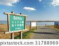 天鵝湖 湖泊 湖 31788969