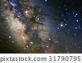 天蠍座 31790795