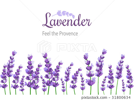 Lavender Card with flowers. Vintage Label 31800634