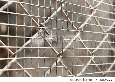 Cage net 31802533