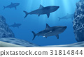 Flock of sharks underwater with sun rays and stone 31814844