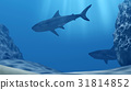 Flock of sharks underwater with sun rays and stone 31814852