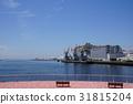 千葉海灣 海 大海 31815204