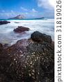 Seascape Hawaii Beach 31819026