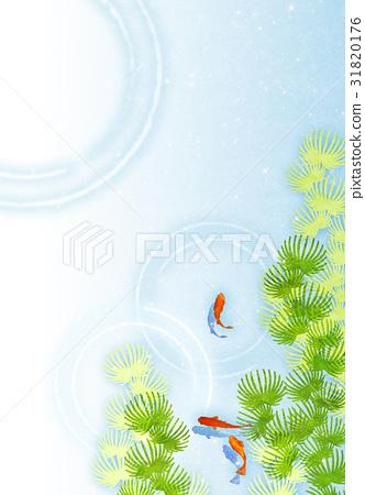 金鱼 水面 背景 31820176
