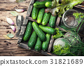 Fresh cucumbers for pickling 31821689