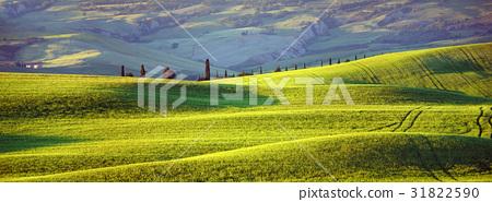 Tuscany, evening sun 31822590