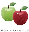 蘋果 綠蘋果 水果 31822704